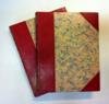 Livres - Les rizieres rouges