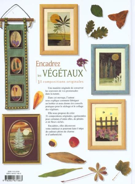 Livre encadrez les vegetaux denise hoerner acheter for Achat vegetaux