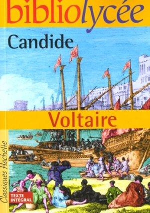Candide Discussion Questions - Study Guides, Essays ...