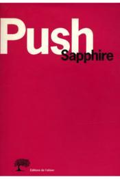 Push: A Novel Summary