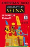 Livres - Les enquêtes de Setna ; le voleur d'âmes
