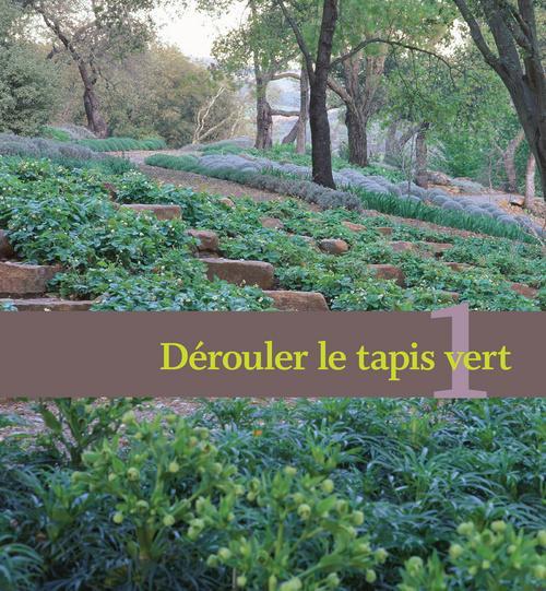 Livre plantes couvre sol des id es originales pour un for Entretien plantes jardin
