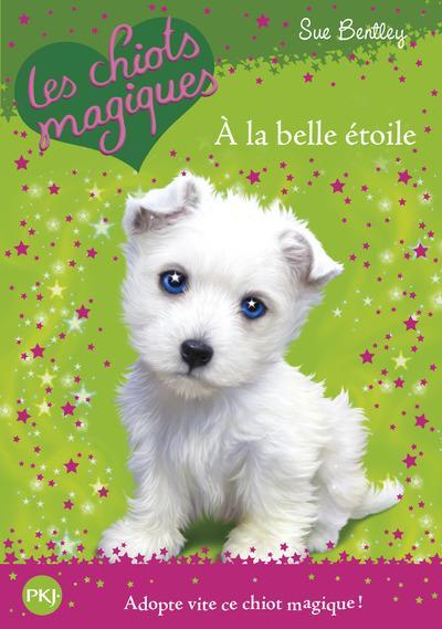 Livre - Les chiots magiques t.6 ; à la belle étoile