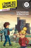 Livres - L'ENIGME DES VACANCES T.3 ; les fantômes de Glamorgan ; du CE2 au CM1 ; 8/9 ans