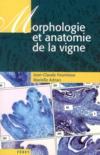 Livres - Morphologie et anatomie de la vigne